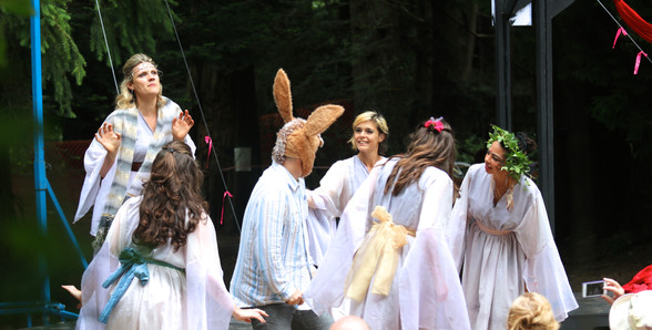 A Mid-Summer Nights Dream - Bottom Meets the Fairies
