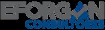 Logo_eForgan_1024.png