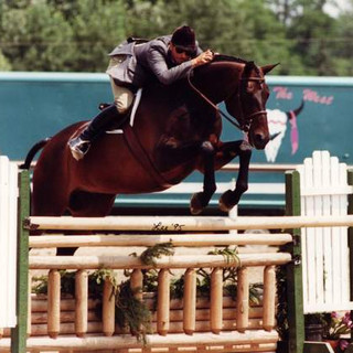 Doubletake, the word to describe him is WOW. An amazing horse. Wise and extremely talented as well as subtly sensitive. He was a 2nd year horse out of the Northwest, CB rode him in a warm up class and bought him. He went on to compete  on Doubletake at Indoors with a broken elbow. © Lee