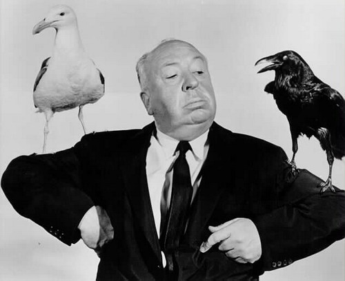 "Hitchckoock sul set ""Gli uccelli"""