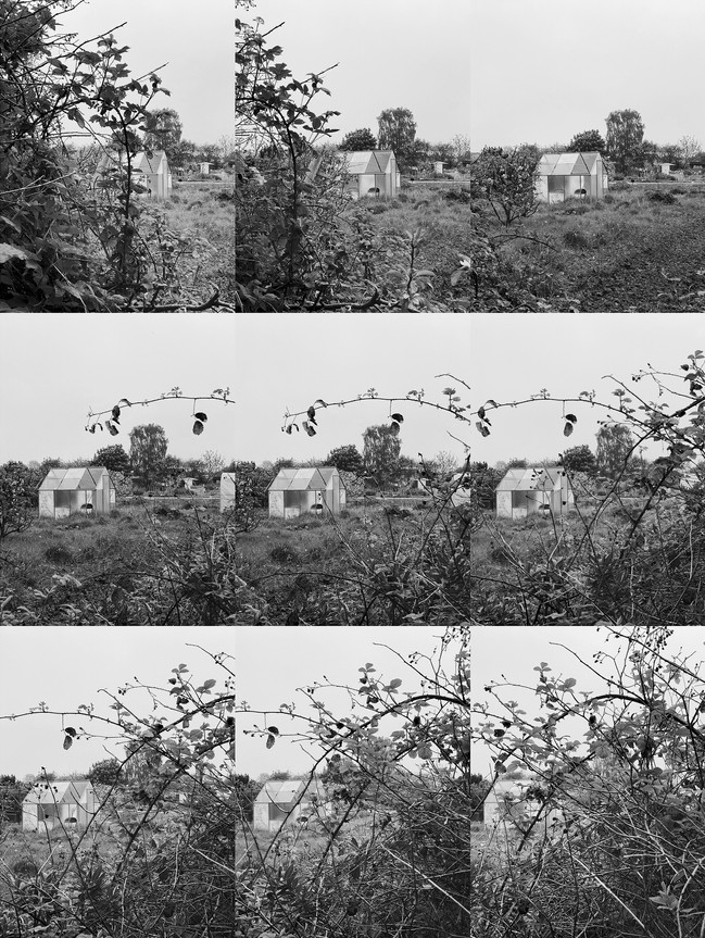 The Allotment, my refuge #08