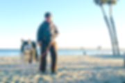 Dog sitter in Oceanside, San Diego North County