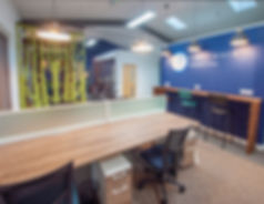 office design with acoustic screen and feature wall