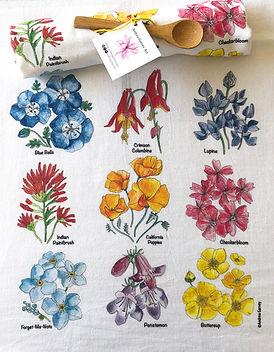 Wildflower Primary.JPG.jpg