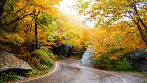 Destination Inspiration: Fall 2019
