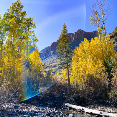 The Ideal 3-Day Itinerary for Fall in Mammoth Lakes, CA