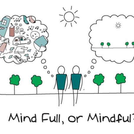 Mindfulness - A Vital Skill For Life