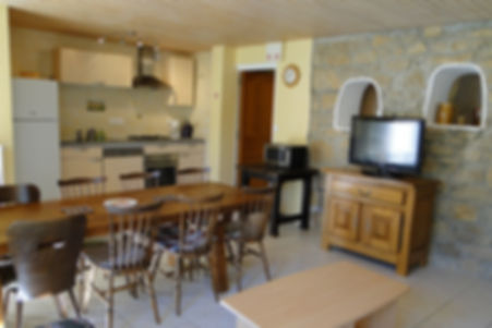 Gite 295 - Kitchen, Dining room, Living room