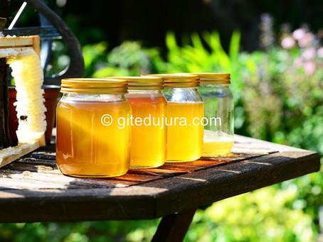 Honey from High-Jura - The Bayard apiary at Foncine le haut