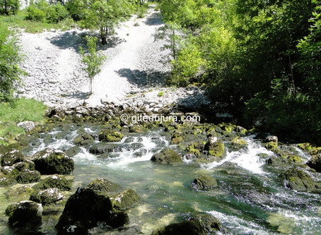 Source de La Saine à Foncine le haut