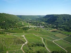 Château-Chalon - Vignobles - Location de gîtes vacances en montagne Haut-Jura