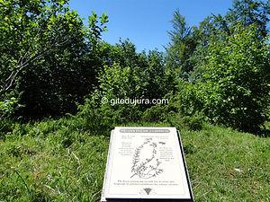 Foncine le haut - Sentier botanique - Plaque descriptive - Location de gîtes vacances en montagne Haut-Jura