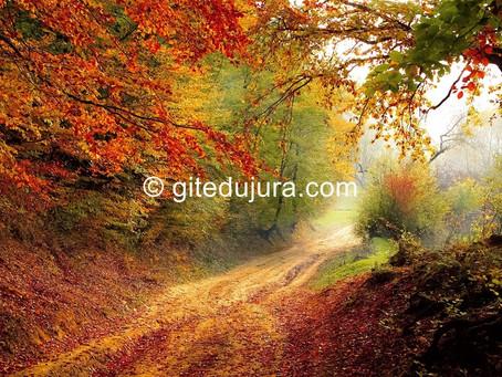 Autumn in the Haut-Jura mountains