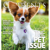 Coco 2013 winner of Currents Commodore Cover Dog.jpg