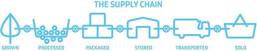 the-supply-chain.jpg