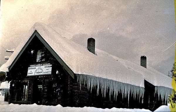 winter Logs.jpg