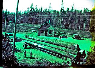 building of The Logs.jpg