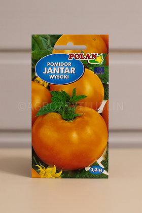 Pomidor JANTAR wysoki