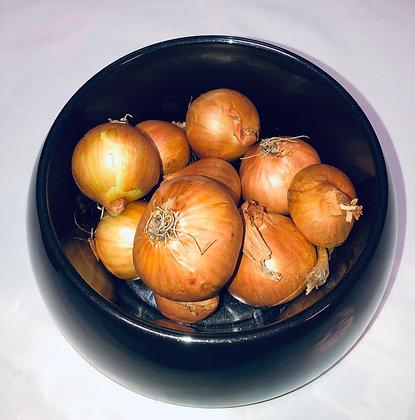 Cebula Dymiona Golden  Szalotka 0.25kg