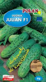 Ogórek gruntowy Julian - mieszaniec 5g.