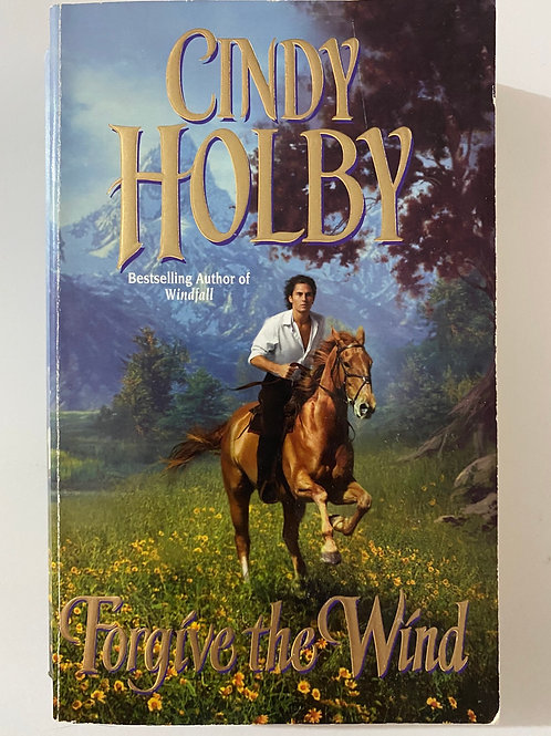 Forgive the Wind by Cindy Holby