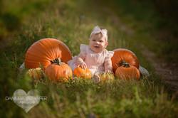 Babybilder im Spätsommer