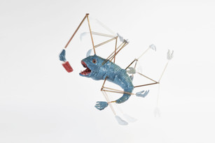 meat pop fish, 2017