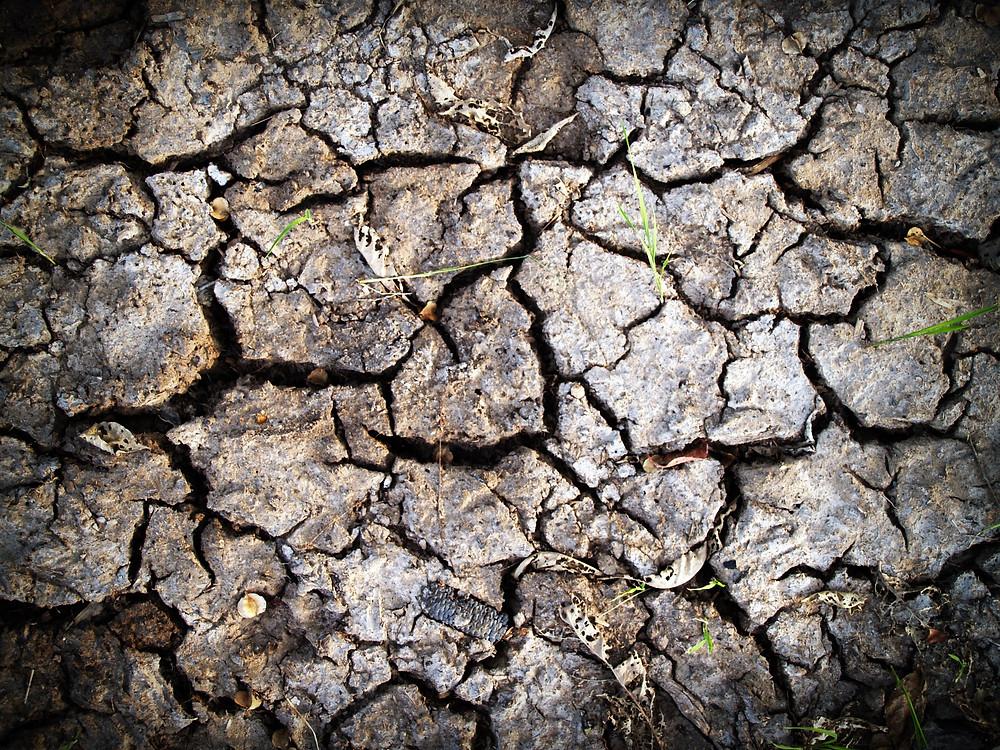 Crepe nella terra arsa