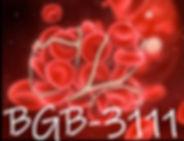 BGB-3111.jpg