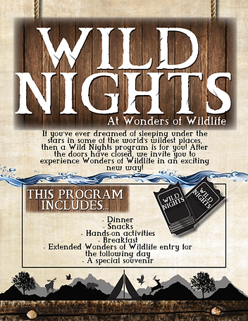 Wild nights flyer4.png