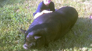 An autistic boy and his pig