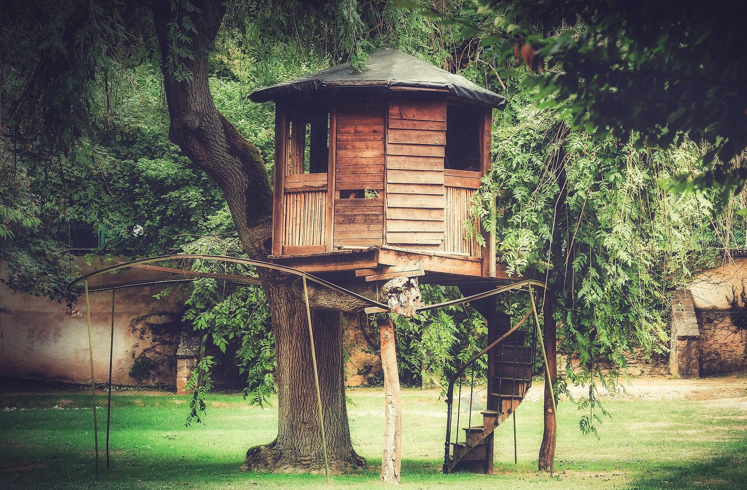 parc cabane en bois domaine de réception Natural Art Shot naturalartshot