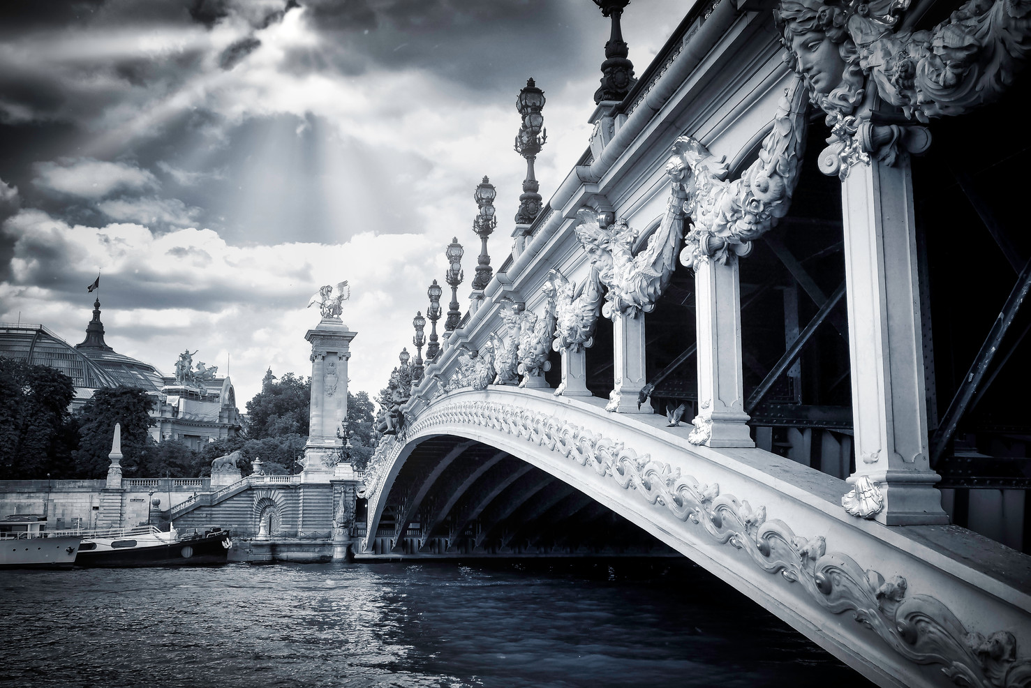 Paris Seine Pont Alexandre III Natural Art Shot