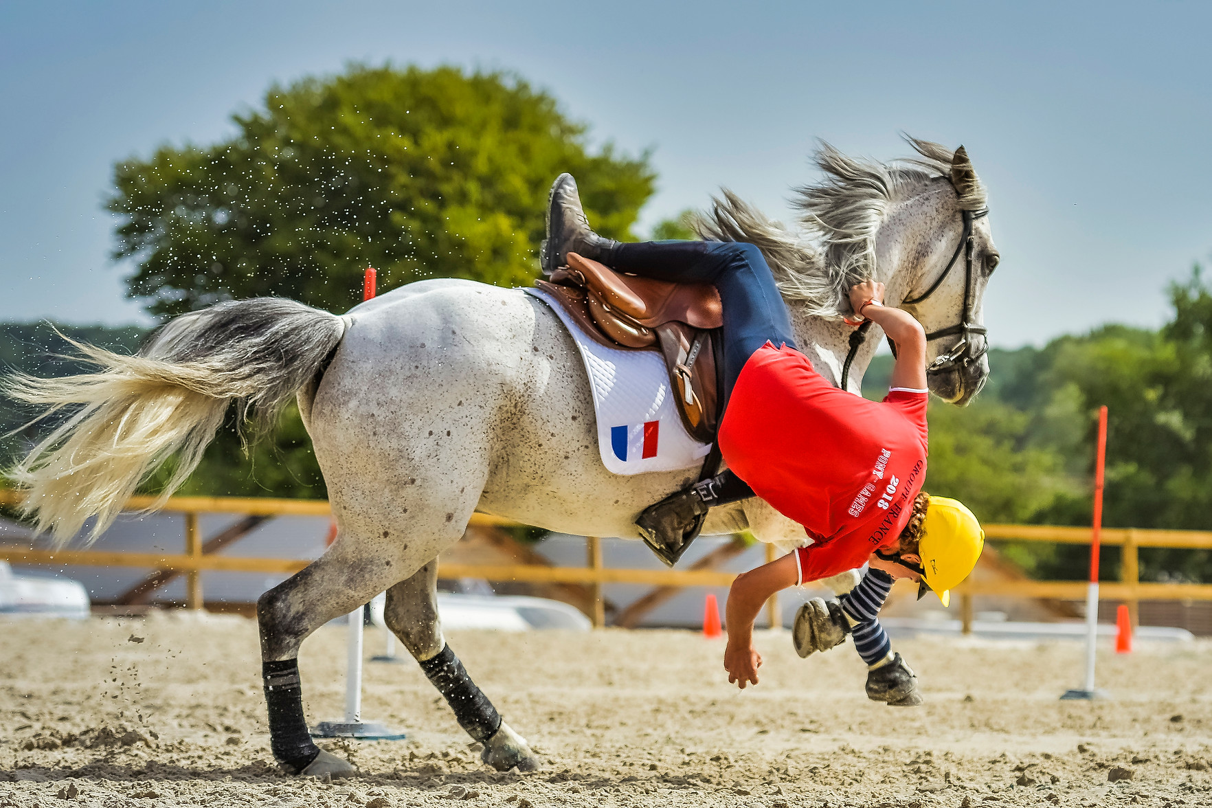 Cheval poney mounted games sporthorse pony mounted games ponygames équtation Natural Art Shot naturalartshot