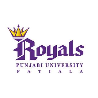 14.Punjabi University, Patiala ( Patiala