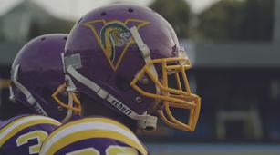 Vipers-Helmets.tif