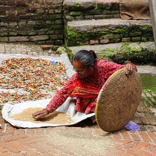 Nepal Portfolio-3.jpg