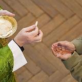 Eucharis.jpg