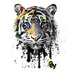 joey tiger.jpg