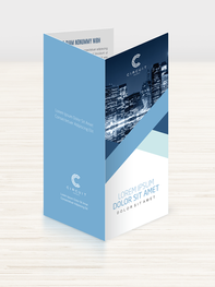 BROCHURE trifold.png