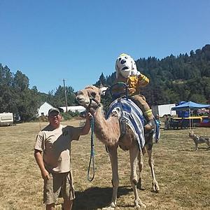 2017 North Douglas County Fair