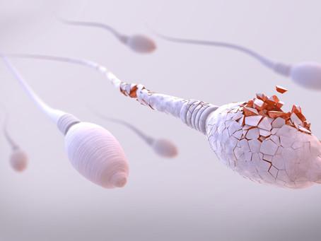 Entendiendo la Fragmentación del ADN en el Esperma: Una Causa de Infertilidad  Poco Conocida
