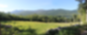 view from wigwam.png