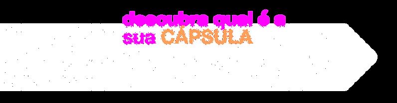 cpsl_site-encapsulando-03.png