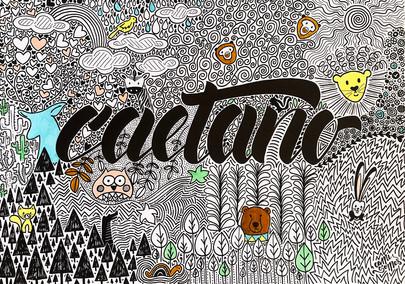 canvas_t-caetano01.jpg