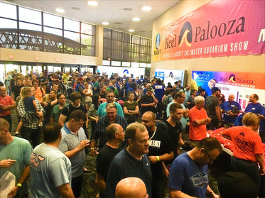 reef-a-palooza-1024x768_edited.jpg