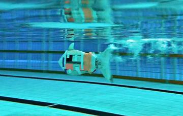 RoboFish.jpg