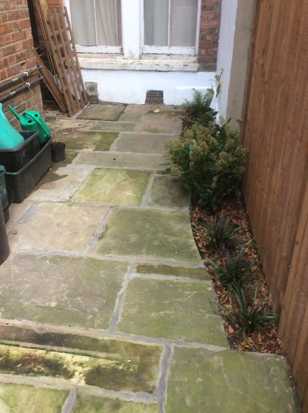 Newly paved area side of the house after 3 months  Muswell Hill, London, N10