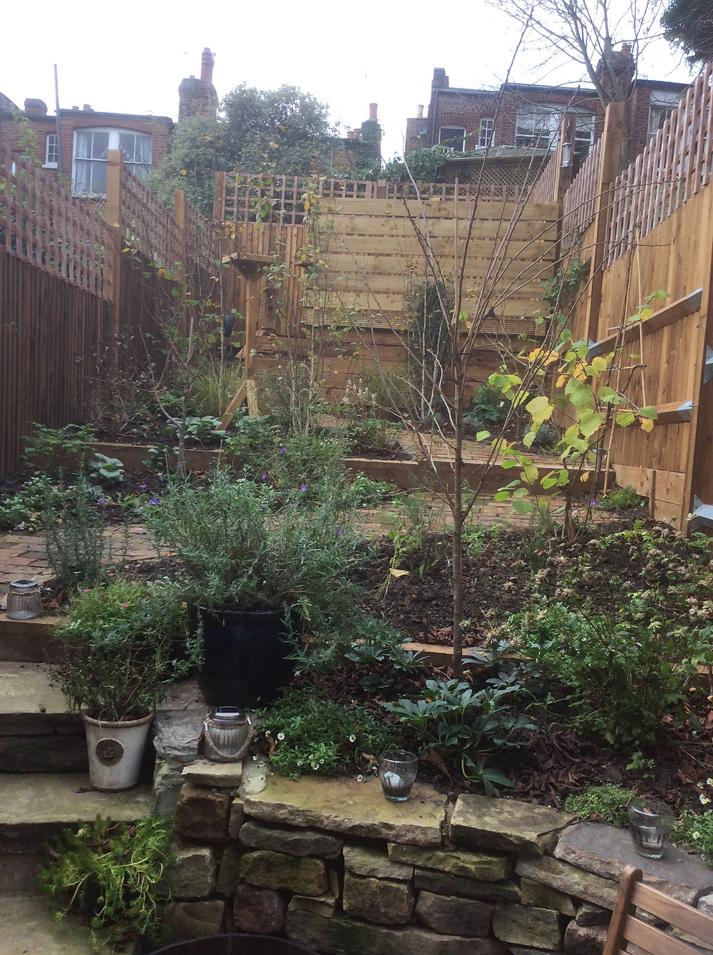 Finished Garden after soft landscaping with plants Muswell Hill, London, N10