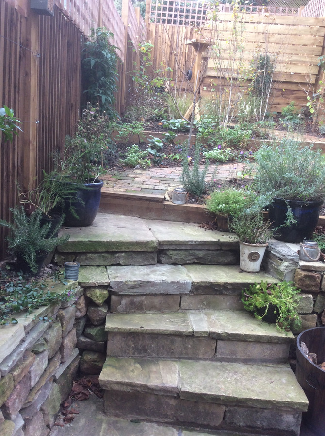 Garden Landscaping in Muswell Hill, London, N10